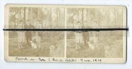 Photo Stéréoscopique   Parentis En Born ( Bois De Lahitte ) 1929 - Photographs
