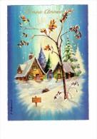 Carte Fantaisie - Bonne Année - Paysage Hiver Neige - Paillettes - Photochrom Glacée 50835 - - Feiern & Feste