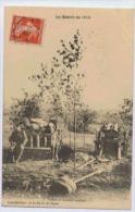 CANON ET CAISSON ANGLAIS SSERIE LA GUERRE DE 1914 - Ausrüstung