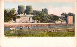 Rhuddlan Castle - Flintshire