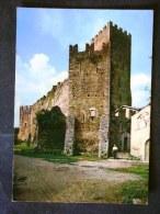LAZIO -LATINA -NINFA -LOTTO N° 452 F.G. - Latina