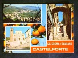 LAZIO -LATINA -CASTELFORTE -LOTTO N° 452 F.G. - Latina