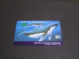 NORFOLK Telecom Whale &Calf; - Norfolk Island