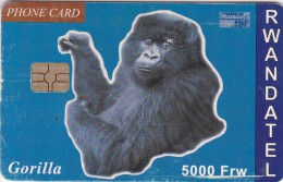 Rwanda, RWA-06, 5000 Frw, Gorilla, 2 Scans.  Please Read. - Rwanda