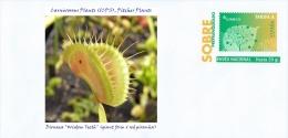 "SPAIN, 2015 Carnivorous Plants (ICPS), Pitcher Plants, Dionaea ""Wisdom Teeth"" (giant form x red piranha)"