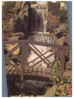 (PF 375) Australia  - NSW - Aubrun Japanese Garden Waterfall - Sydney