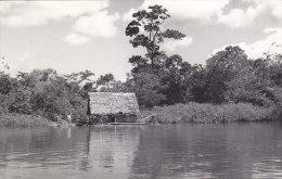 Peru - Iquitos - Jungle Hut real photo postcard