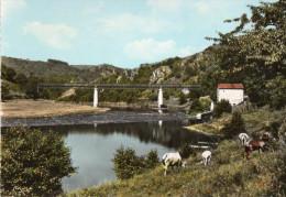 BULLY  Cpsm Le Pont De Presle - France
