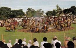 Fire Walking Ceremony, Fiji - Caines Jannif C16697 Unused, Probably 1960s - Fiji