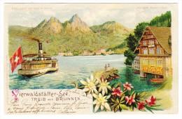 AK SZ Vierwaldstätter-See Treib Mit Brunnen Meteor Karte Gebr. Metz Ges. 2.6.1900 Fribourg - SZ Schwyz