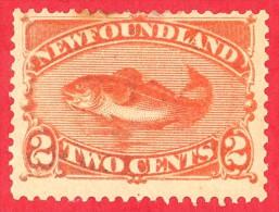 Canada Newfoundland # 48 - 2 Cents - Mint - Dated  1880-96 - Cod / Morue - 1865-1902