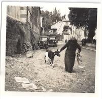 ABRIES  ?  UNE FEMME TIRE UNE CHEVRE PAR LA CORNE DANS LA RUE-  VIEILLES VOITURES  1937 6X6CM - Lugares