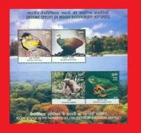 Inde India 2012,  Oiseaux Singe Grenouille / Frog Ape  Birds Sheetlet MNH ** - Autres