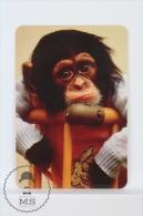 1998 Small/ Pocket Calendar - Cute Baby Monkey - Calendarios