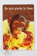 1996 Small/ Pocket Calendar - Cute Monkey Eating Cakes - Calendarios