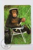 1993 Small/ Pocket Calendar - Monkey Fishing - Calendarios
