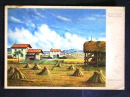 LAZIO -LATINA -LITTORIA -LOTTO N° 452 F.G. - Latina