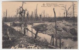 Ruines Des Environs De Kemmel, 1914-18 Ruines Du Château (pk22802) - Heuvelland