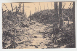 Ruines Des Environs De Kemmel, 1914-18 Chemin Creux (pk22805) - Heuvelland
