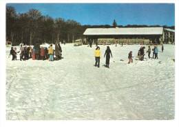 LOGE DES GARDES, Allier : Ski De Pistes : Le Chalet Hors Sac; Auto 2 Cv Camionnette, Animée, TB - Autres Communes
