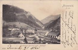 Autriche - Nasswald N. Ö - Huebmers Gasthof Zum Reithof - Postmarked Semmering 1903 - Semmering