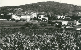 83 SAINT ZACHARIE VAR PROVENCE - Saint-Zacharie
