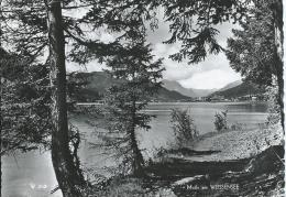 AK 0216  Weissensee - OT Weissenbach- P. Stockenboi / Verlag Fenz Um 1955 - Weissensee