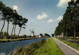 BELGIQUE - FLANDRE OCCIDENTALE - DAMME - De Molen En Kanaal Brugge-Sluis - Le Moulin Et Le Canal Bruges-Sluis. - Damme