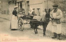 TYPES TOULAISAINS MARCHANDE DE POISSON EN BALADEUSE  EDITION LABOUCHE N°5 - France