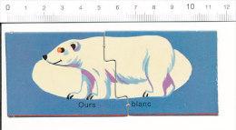 Ours Blanc / Ours Polaire Polar Bear Animal   // IM 51-D1 - Ohne Zuordnung