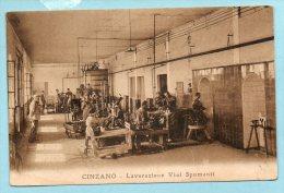 Cinzano - Lavorazione Vini Spumanti - Italia