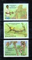 Rwanda - 1399/1402 (Sans 1400) - Végétaux - 1993 - MNH - Rwanda