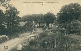 29 PLOUDALMEZEAU / Moulin De Penchreach / - Ploudalmézeau