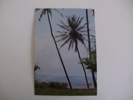 Postcard/Postal - Brasil - Natal - Praia De Pirangi Do Norte - Natal
