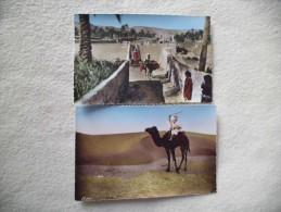 2 CARTES COLLECTION ARTISTIQUE L'AFRIQUE ..PAYSAGE DU M'ZAB ET LE DESERT,LA HALTE - Cartes Postales
