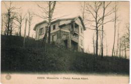 Mosanville, Chalet, Avenue ALbert (pk21404) - Namur