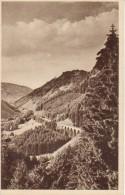 Hollental Mit Ravennabrucke Schwarzwald- (a3223) - Hinterzarten