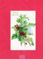Fröhliche  Weihnachten (( Bouquet De Gui )) - Noël