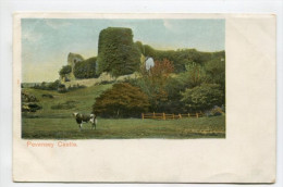Pevensey Castle - Other