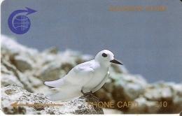 TARJETA DE ASCENSION ISLANDS DE UN PAJARO (BIRD-PAJARO) 1CASC