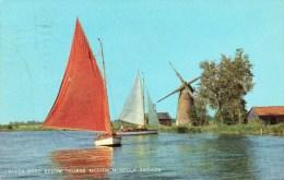 Postcard - Oby Windmill, Norfolk Broads. 1-30-02-10 - Moulins à Vent