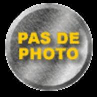 L'Illustration N° 4011 Du 17/01/1920 ,traité Versailles , Inondations Paris , Page Double Pont De Bois Allemand Dubissa - Livres, BD, Revues