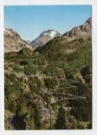 SWITZERLAND - AK 237897 Die Serpentinen Der Malojastrasse Und Piz Del Forno - GR Grisons