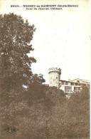 Nogent-en-Bassigny. Tour De L'ancien Chateau. - Nogent-en-Bassigny