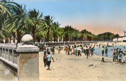 B15996 Bizerte , La Plage - Tunisie