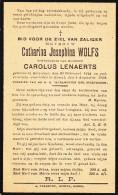 Wolfs Catharina,Josephina - Lenaerts Carolus ° Rotselaar 1844 + 1928 Kessel Lot.8490 - Images Religieuses