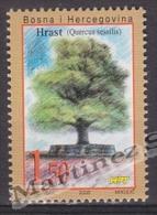 Bosnia Herzegovina - Mostar - Croatia 2000 Yvert 48B, Flora, Trees - MNH - Bosnia Herzegovina