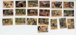 Hagenbeck (1929) - Hyänenfang In Abessinien. Hyenas, Hyenes (full Serie Of 20 Pictures) - Otras Marcas