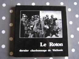 LE ROTON DERNIER CHARBONNAGE DE WALLONIE  R�gionalisme Charbonnages Mine Charbon Mineur Farciennes Pays Noir Charleroi