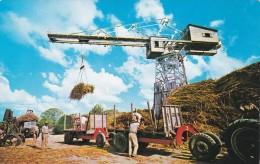 Hoisting Sugar Cane, Barbados, West Indies, 1960-70s - Barbades